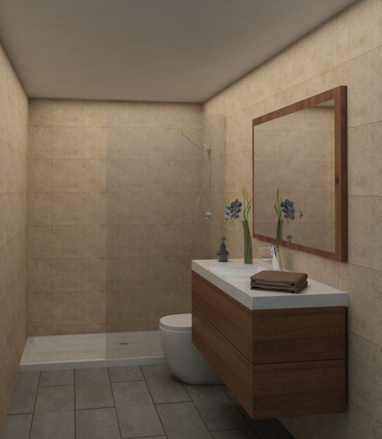 Reforma Baño Azulejos:Reforma de baño